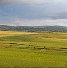 spacious prairie scenery