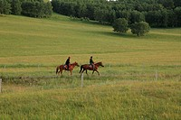 Two people are riding horses on Fengning grassland in Hebei,China