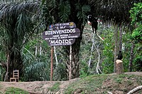 Madidi National Park in the upper Amazon river basin in Bolivia