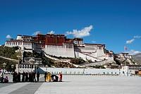 a group of Lama beneath Potala Palace