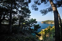 Sa Boquera, Tossa de Mar, Costa Brava, Catalonia, Spain, Europe