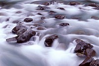 Rapids in Sol Duc River course over and around boulders, Sol Duc Valley, Olympic National Park, Washington, USA