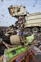 Smith´s Creek, Michigan - A truck dumps garbage at St  Clair County´s Smith´s Creek Landfill  Landfill operators collect methane from decaying refuse ...