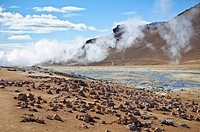 N&#225;mafjall is a geothermally-active area in Iceland