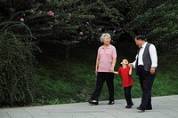 Grandmother, grandfather and grandson walking in the park