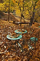 Autumn leaves litter the ground and cafe tables, in the Taygetos mountains near Kastania, Outer Mani, Southern Peloponnese, Greece