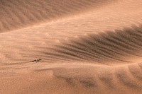 Sand ripples of red dune in the Namib desert, Namibia