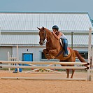 Athletic teen girl jumping a horse over rails
