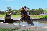 Horse Rider Crossing Water in Equestrian Event