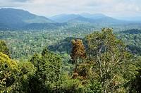 View of Taman Negara National Park from Bukit Teresek, Pahang, Malaysia,Southeast Asia, Asia