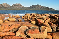 Red lichen on rocks, The Hazards and Coles Bay, Freycinet National Park, Freycinet Peninsula, Tasmania, Australia, Pacific