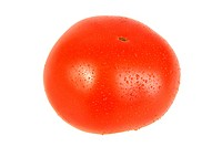 Dew on red single tomato.