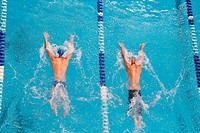 Male Swimmers Competing In Pool, Butterfly Stroke