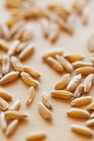 Kamut grains