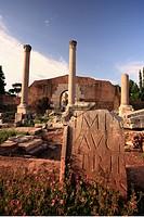 Italy, Rome, Roman forum at sunset