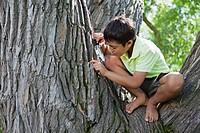 Boy 5-6 sitting on tree and looking through magnifying glass (thumbnail)