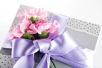 Wrapped Gift Box And Pink Carnation Flowers