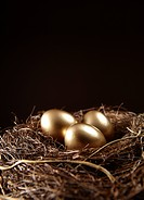 Three gold egg in the nest