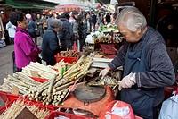 sugar-cane market in Hongkong