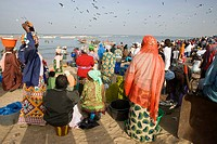 Crowd and seagulls wait as open fishing boats arrive with catch Tanji Beach The Gambia