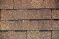fragment of roof shingle