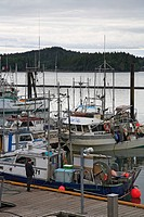 Commercial fishing boats at wharf, Prince Rupert, British Columbia, Canada