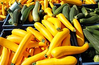Yellow and green squash for sale.