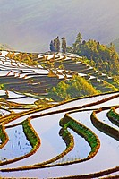 Laohuzui terraces,Yuanyang,China