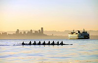 Team rowing boat in bay