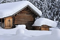 Alpine hut coverd by snow, Eggen Valley, Alto Adige, South Tyrol, Italy