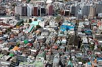Tokyo Urban Neighborhood