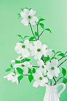 Dogwood Blossom Bouquet