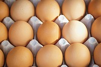 Eggs In A Carton, Berkeley California United States Of America