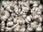 Still head and dry garlic cloves