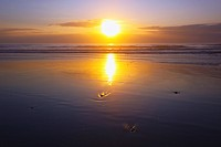 sunset over the pacific ocean along the oregon coast, oregon united states of america