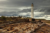 a lighthouse and piles of logs on the shore, lothian scotland