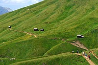 Italy, Trentino_Alto Adige, autonomous province of Bolzano, Dolomites, near Passo Sella, hikking around the Gruppo Sassolungo