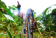 Dominica, South East area of island, area of Victoria Falls, James Moses, the famous Rastaman heros of independance of 70´s, here in his organic garde...