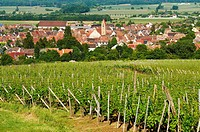 France, Haut Rhin, Alsace Wine Route, Eguisheim, labeled Les Plus Beaux Villages de France The Most Beautiful Villages of France, view on the village
