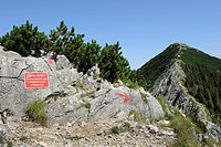 Ridge to the summit of Brecherspitze Mountain, Schlierseer Mountains, Mangfallgebirge Mountains, warning sign for a dangerous alpine area, Upper Bavar...