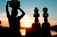 Women fetching water at sunset  Gujarat, India