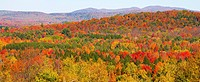 Panorama of autumn forest, Sutton, Quebec, Canada