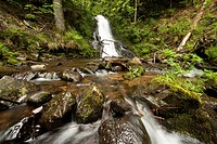 Todtmoos waterfalls, the smaller waterfall runing through a mossy forest, southern Black Forest, Baden-Wuerttemberg, Germany, Europe
