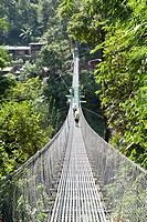 Long metal suspension bridge spanning over a valley at the Arniko Rajmarg Highway, Nepal, Asia