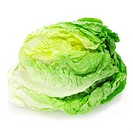 an iceberg lettuce on a white background