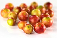 Camu camu berry fruits lat. Myrciaria dubia which are grown in the Amazon region and have a very high Vitamin C content Selective Focus, Focus on the ...