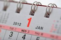 Macro January of 2012 calendar