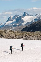 Hikers on a snowfield, National Park Jotunheimen, Norway