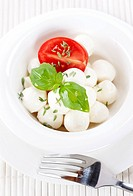 mozzarella with fresh basil and tomatoes