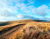Carpathian Mountains Ukraine landscape with country road. Three shots composite picture.